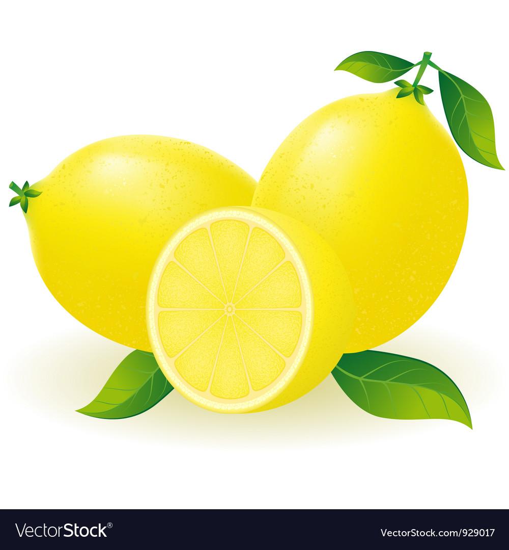 lemon vector free download - photo #45
