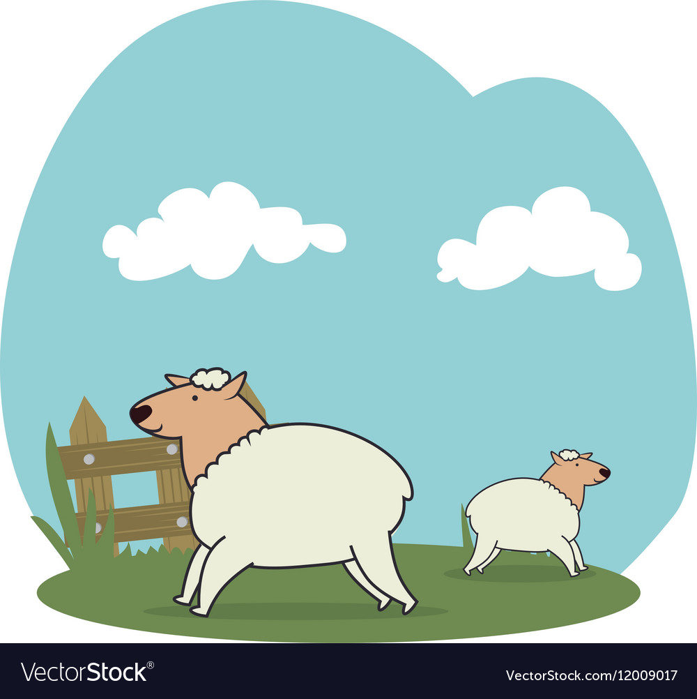Sheeps in the field vector image