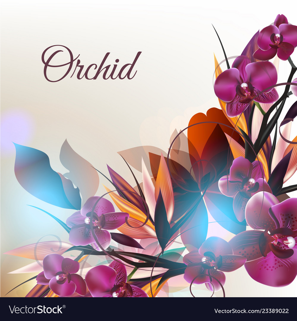 Background with orchid flowers