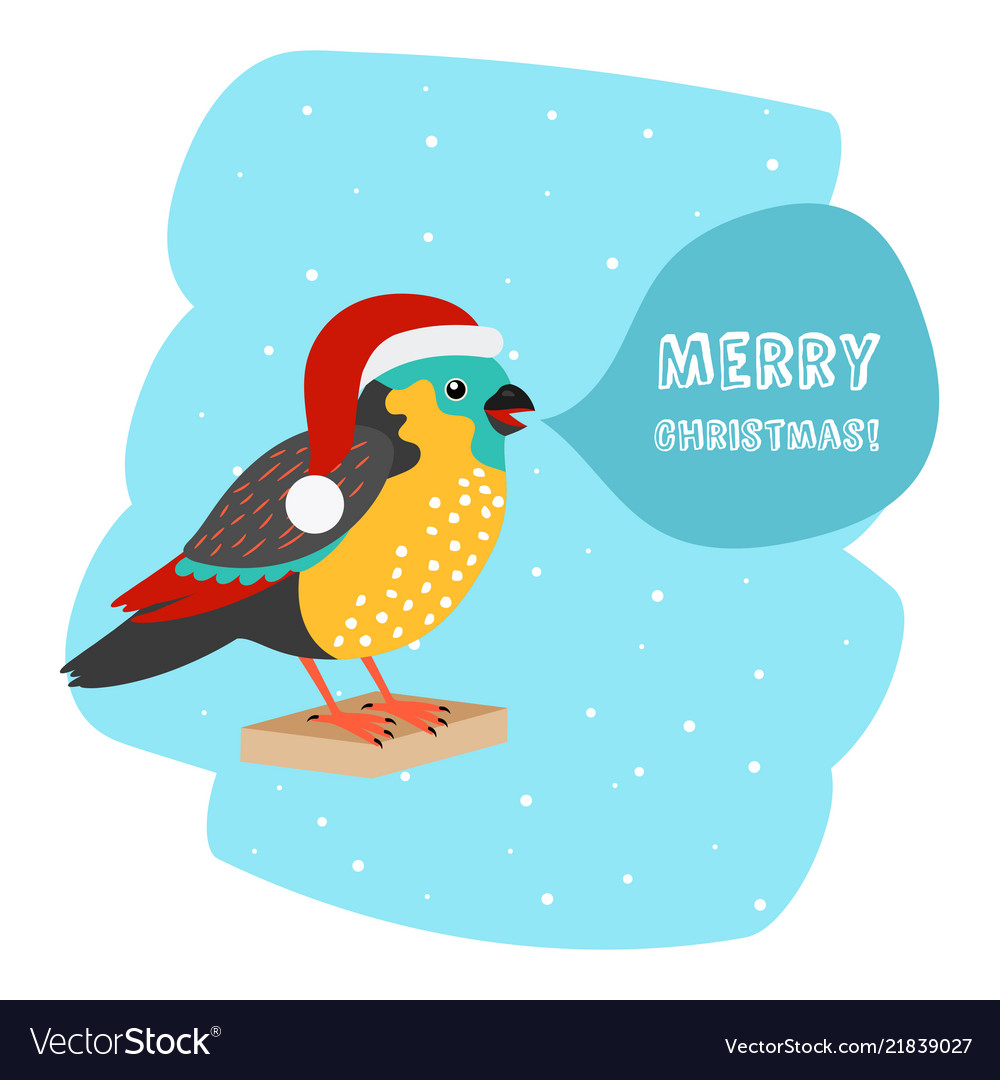 Bird with santa hat christmas car template Vector Image
