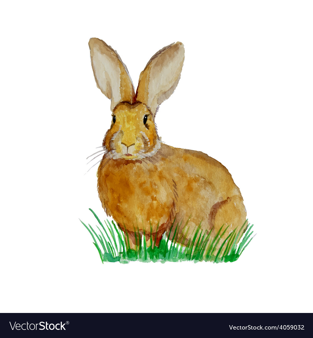 Watercolor bunny on meadow