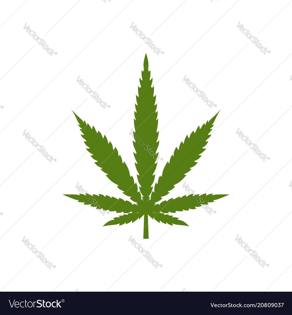 Logo marijuana leaf isolated on white background
