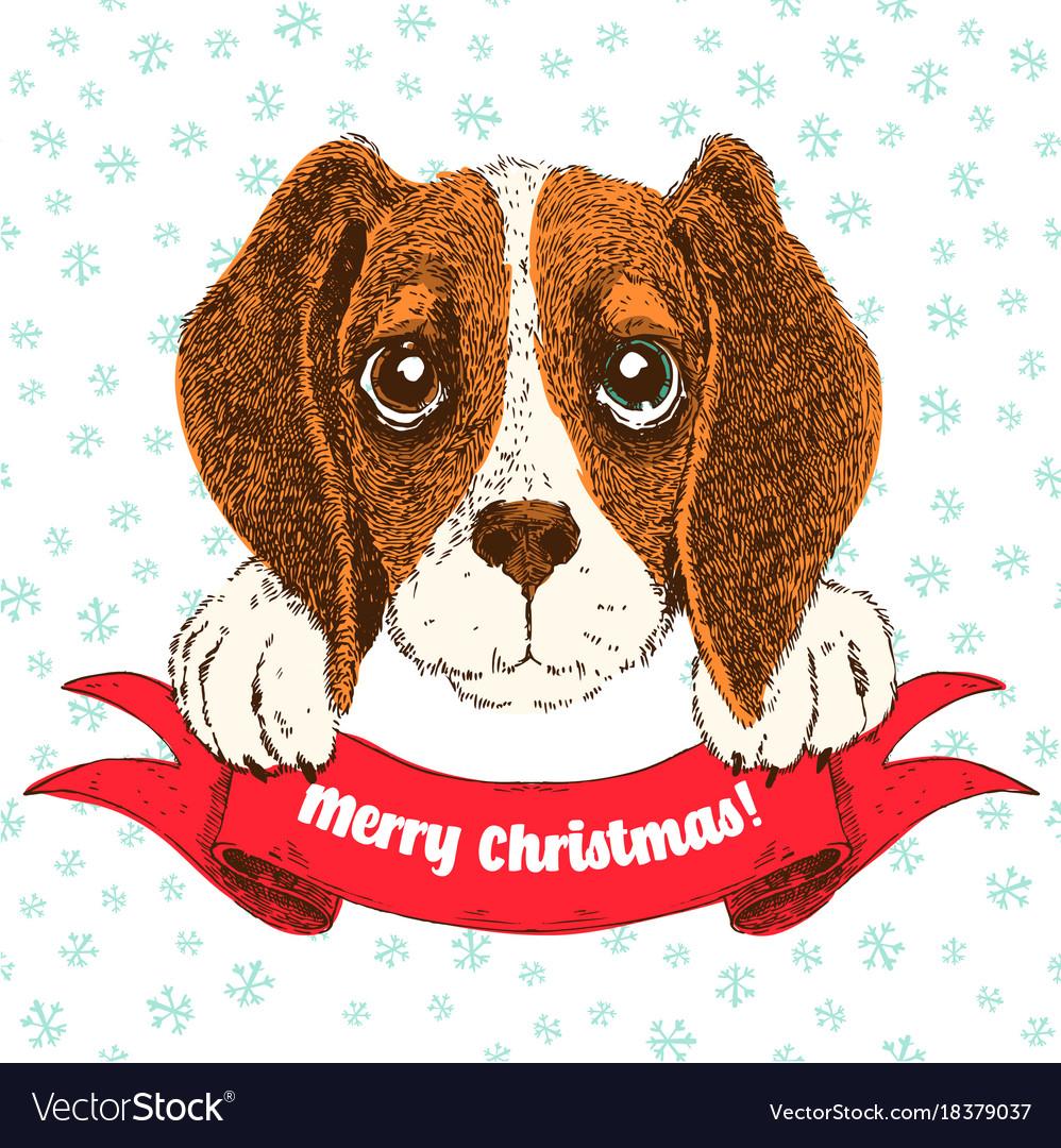 Sketch Funny Beagle Puppy Royalty Free Vector Image