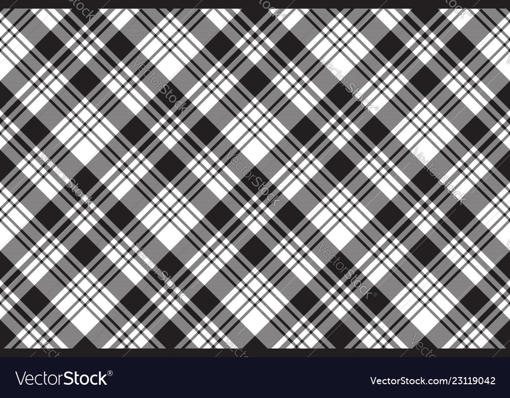 Fabric Texture Diagonal Black White Plaid Vector Image