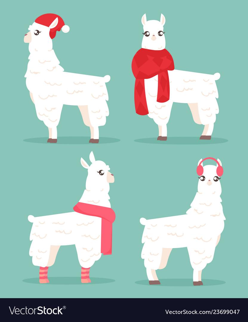 Winter style llama alpaca