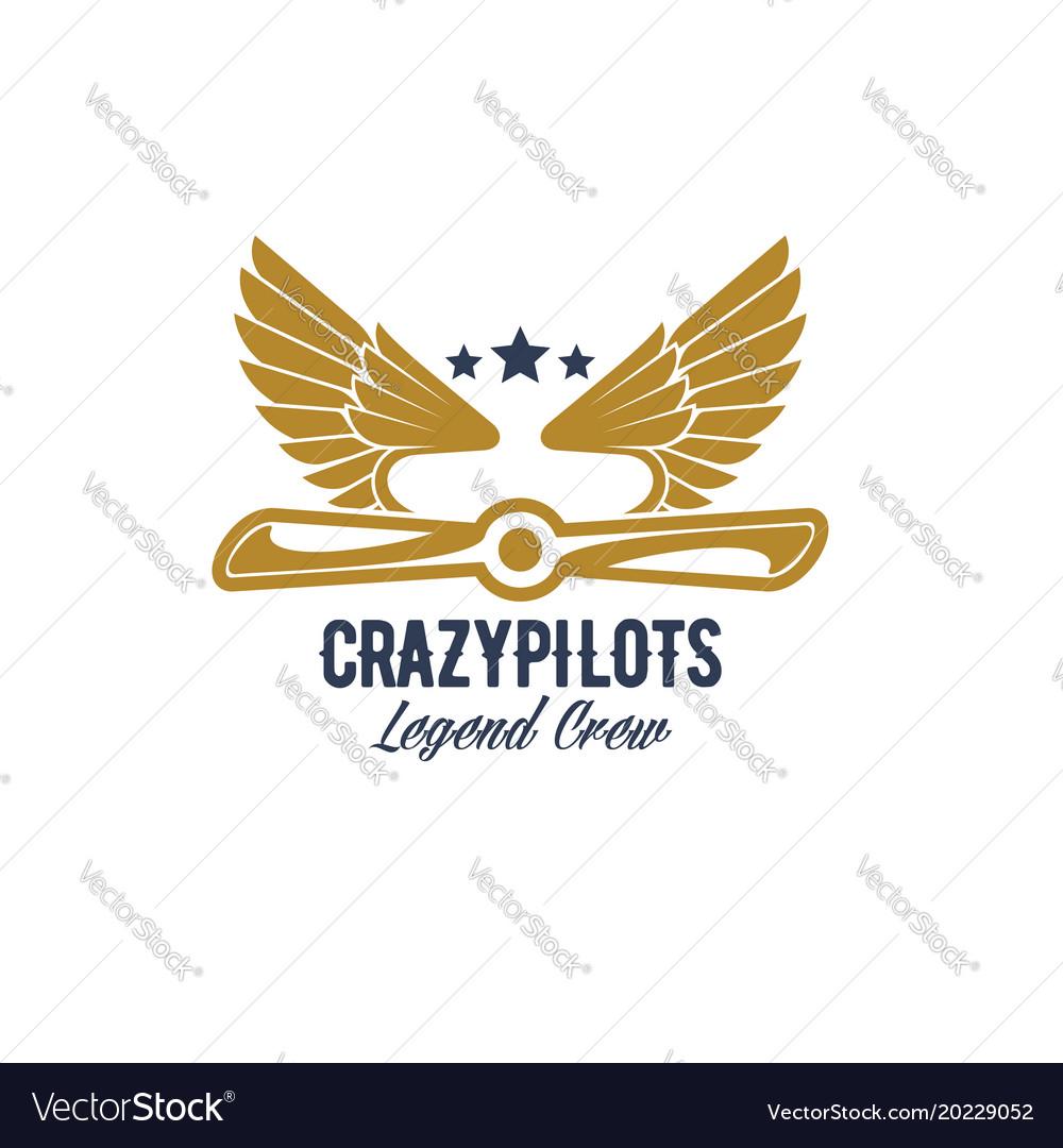 Air pilots team retro airplane icon