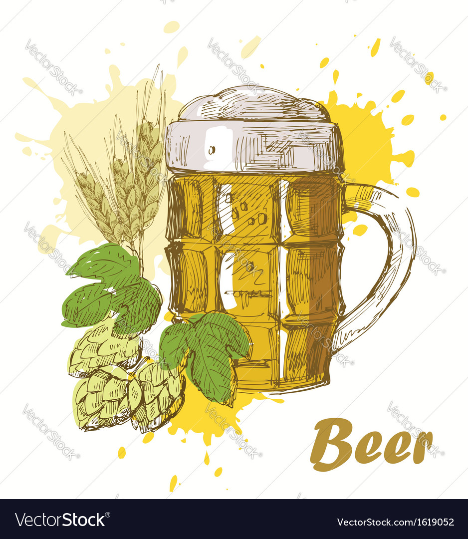 hand draw beer royalty free vector image vectorstock