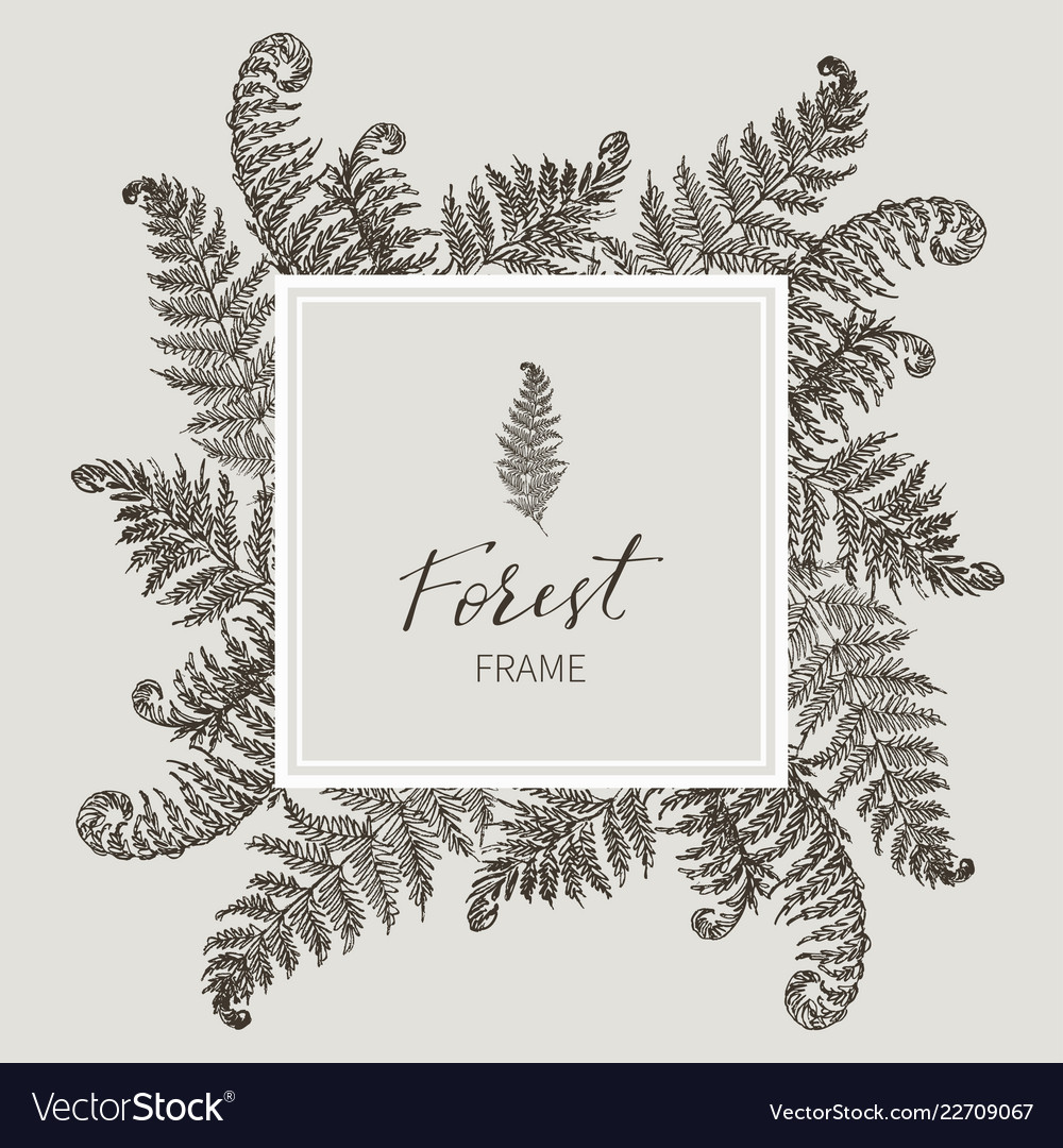 Beautiful card with a square frame with wreath of