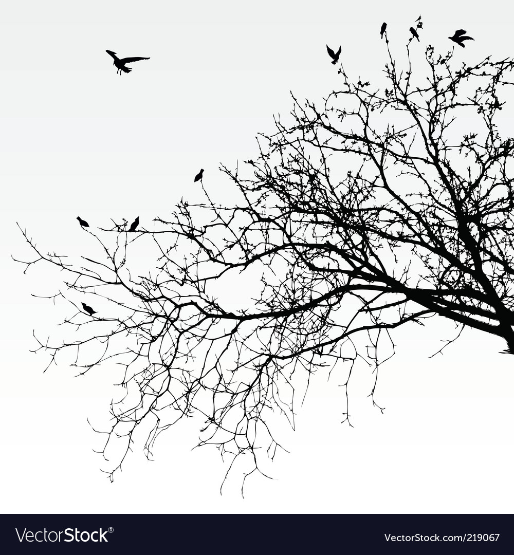 branches royalty free vector image vectorstock rh vectorstock com branch vector images branch vector images