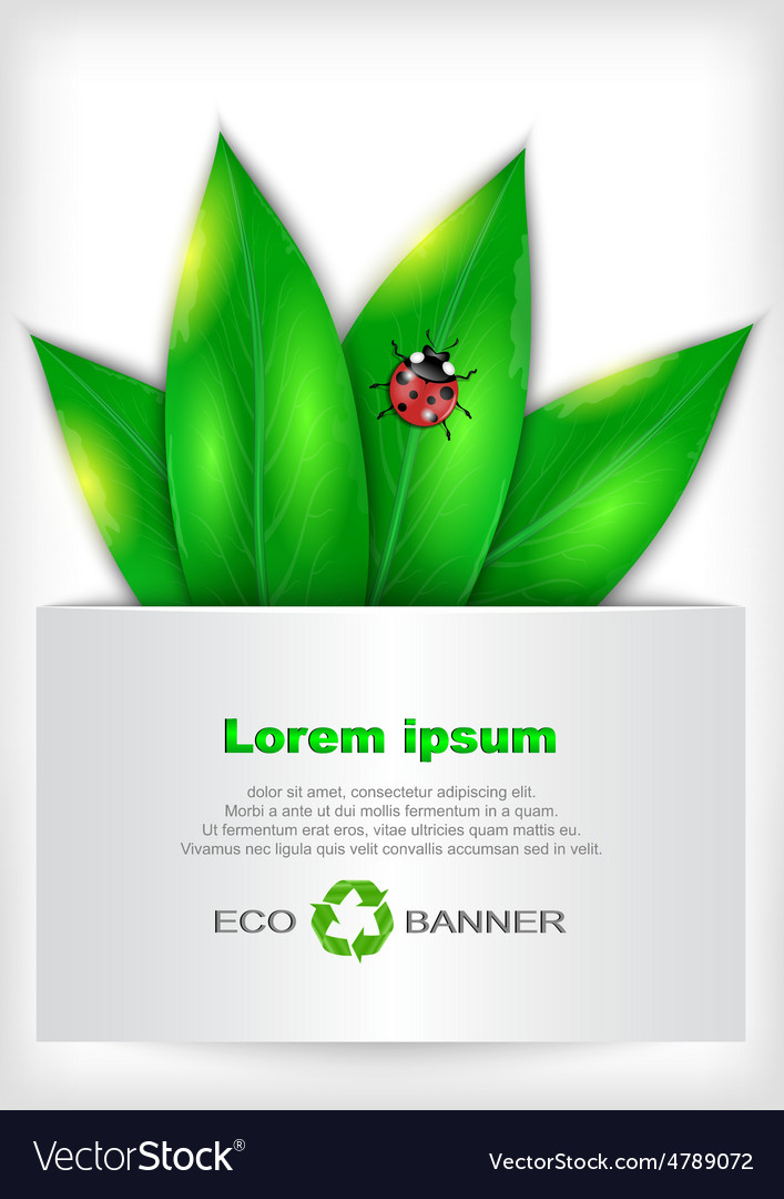 Banner with green leaves and ladybug