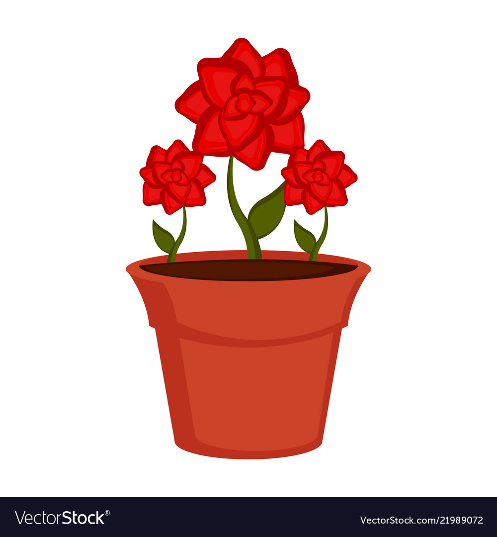 Flower Pot Royalty Free Vector Image