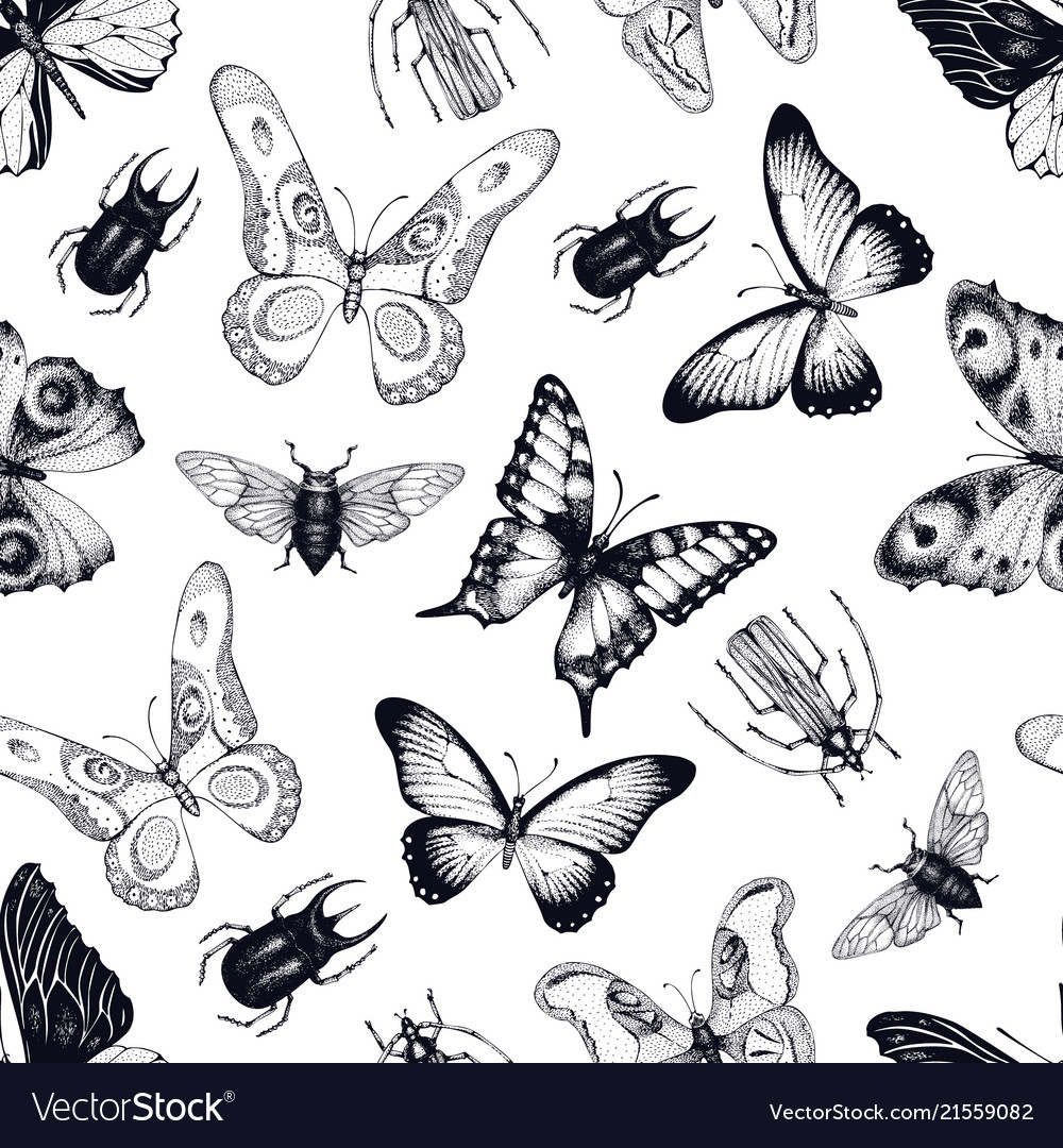 Seamless pattern with insects and