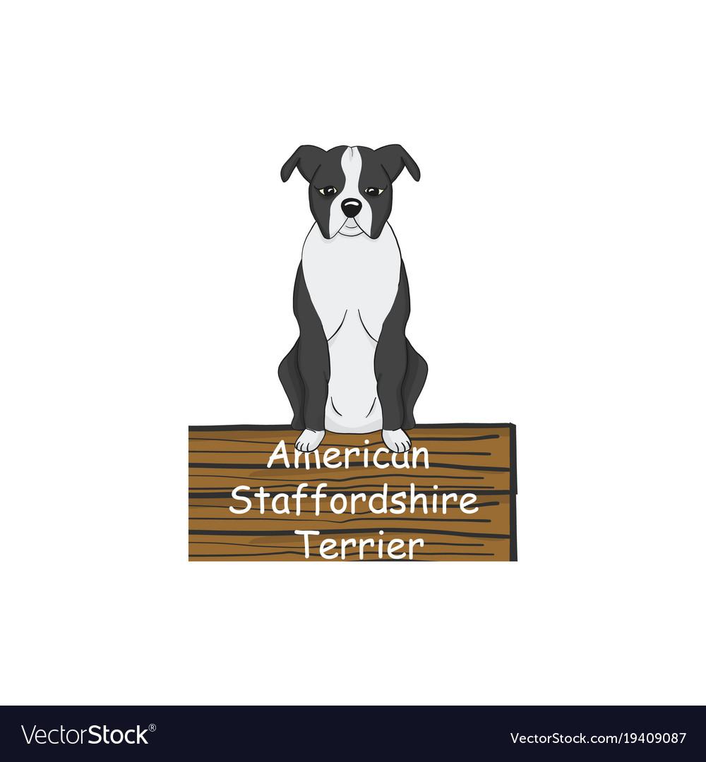 American staffordshire terrier cartoon dog icon