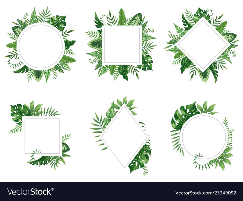 Exotic leaf frame spring leaves card tropical