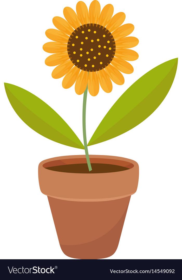 Sunflower in a flowerpot icon flat cartoon style