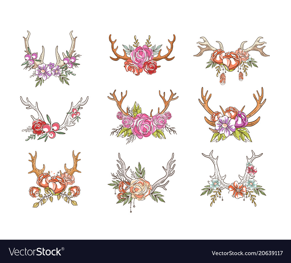 Deer horns with flowers set hand drawn floral