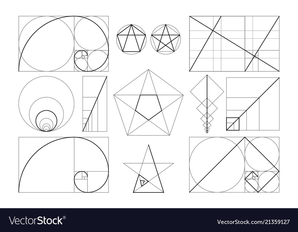 template of figures in frame of golden ratio vector image