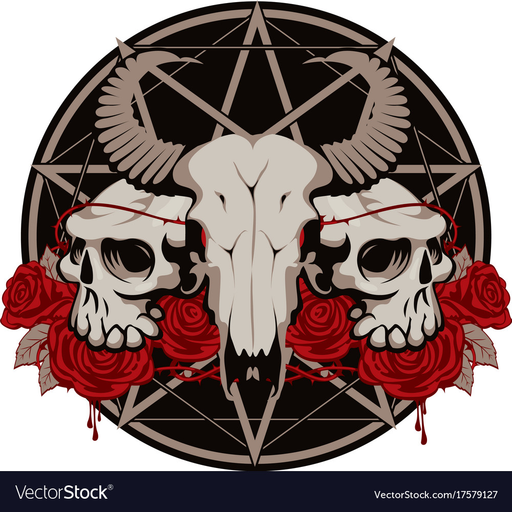 With Skulls Roses And Pentagram Royalty Free Vector Image