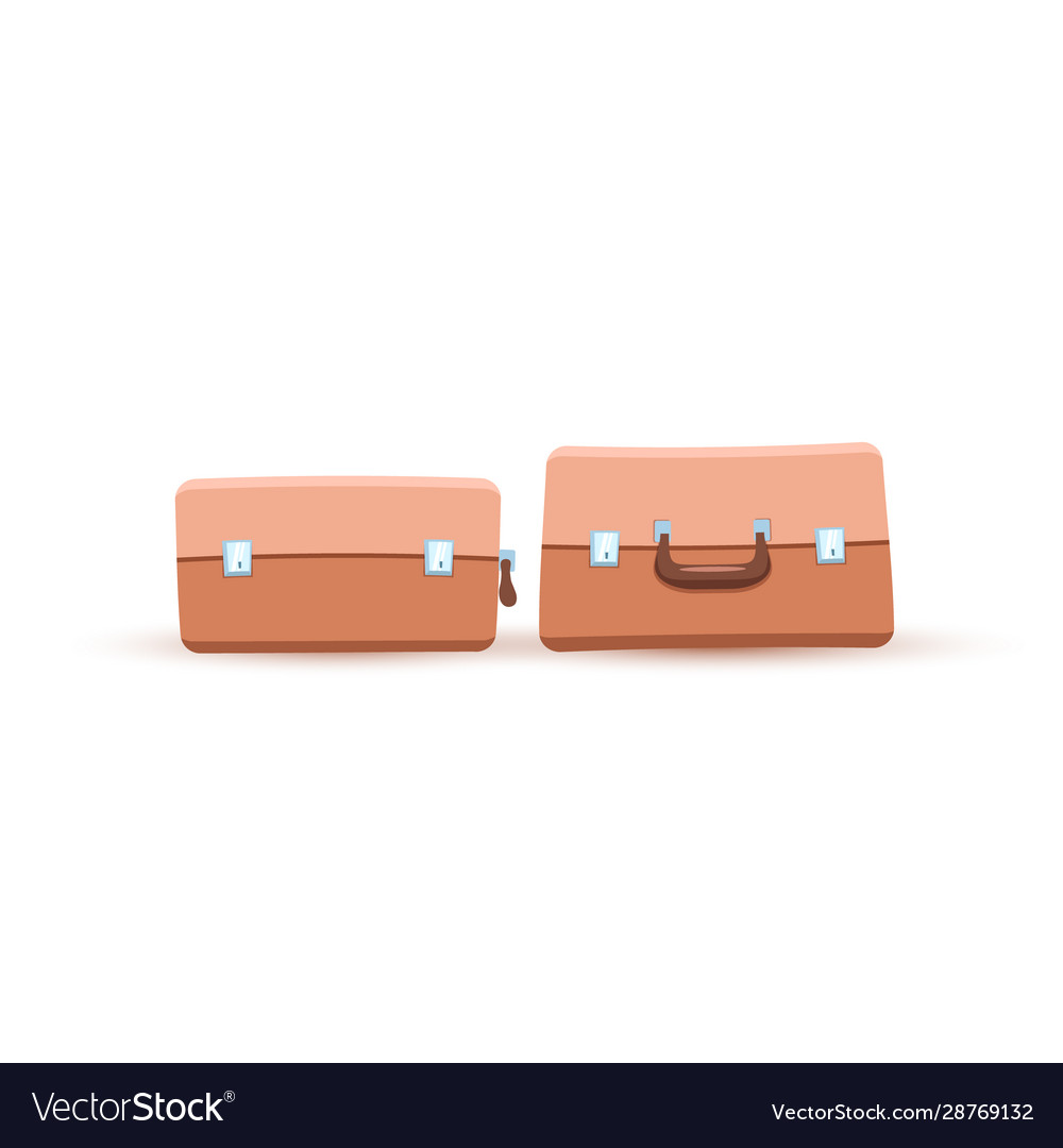 Two luggages or bags or valise or carpetbag flat