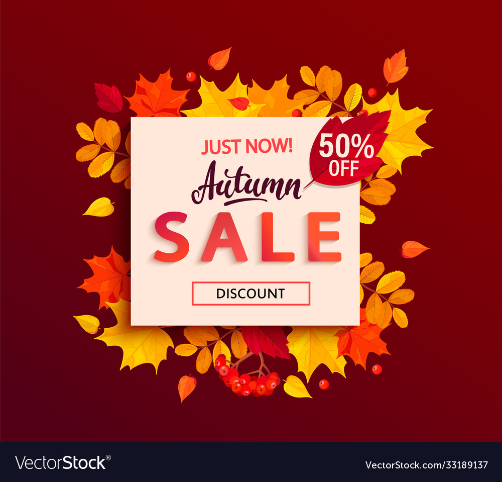 Autumn sale banner with square frame fall leaves