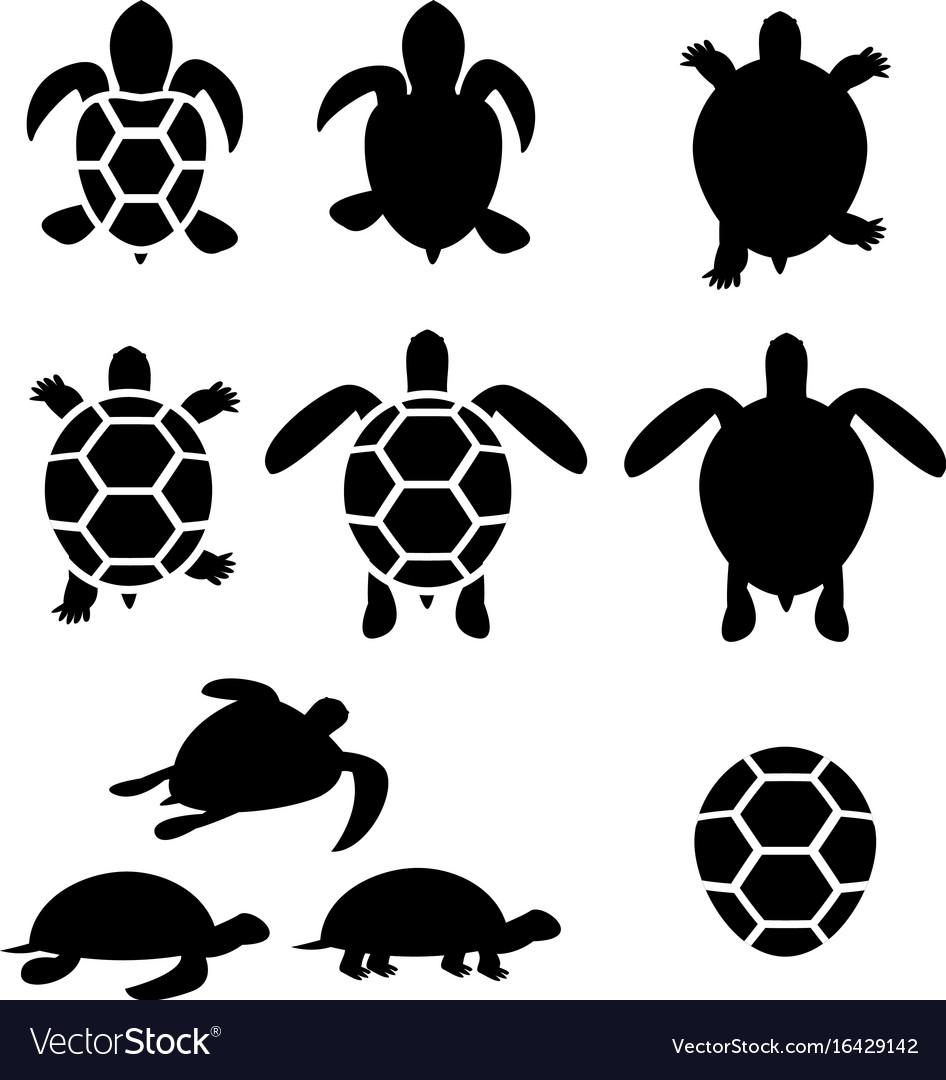 Set turtle and tortoise silhouette