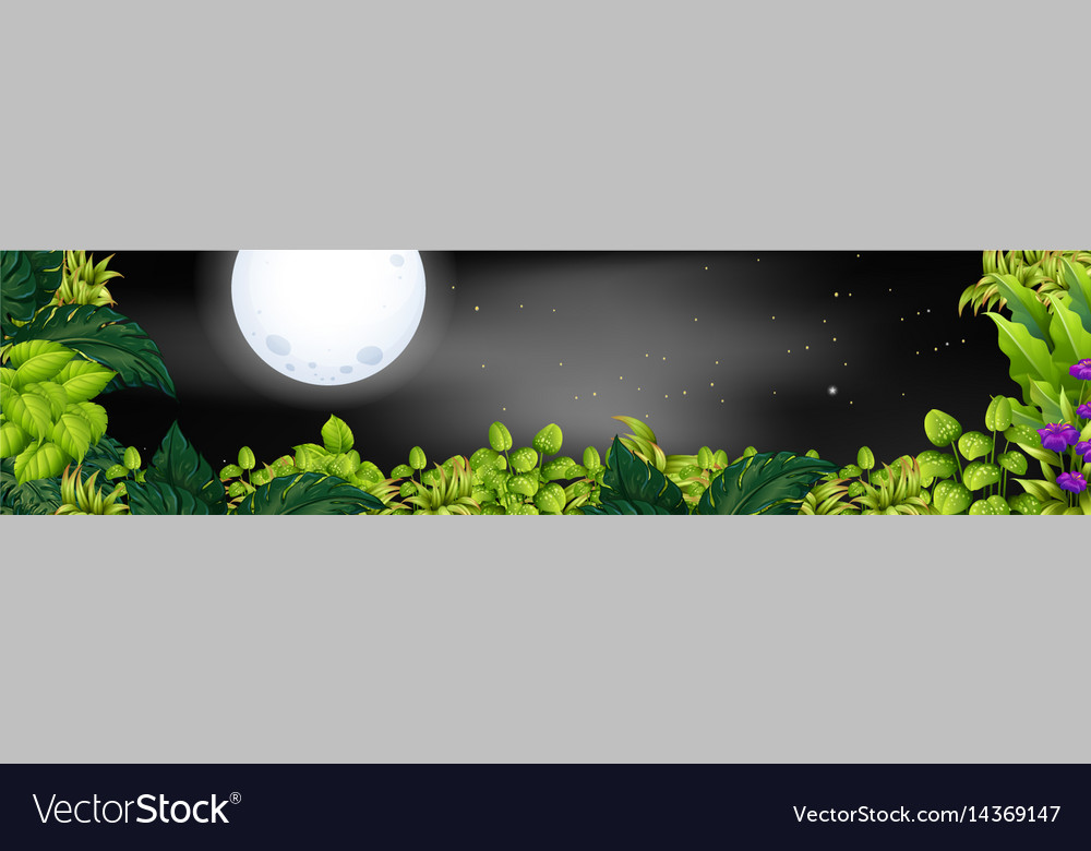 Night scene with fullmoon over the garden vector image