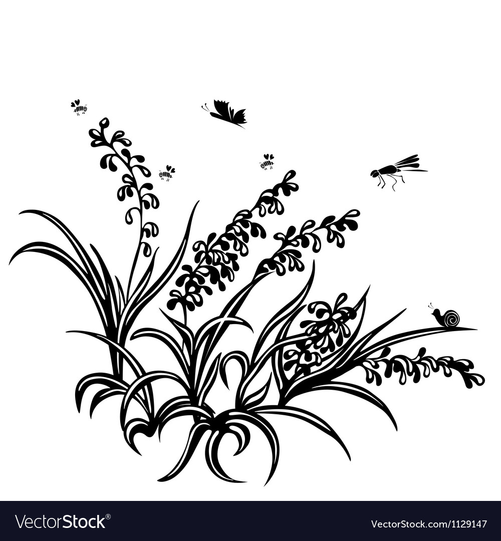 Summer background of plants vector image