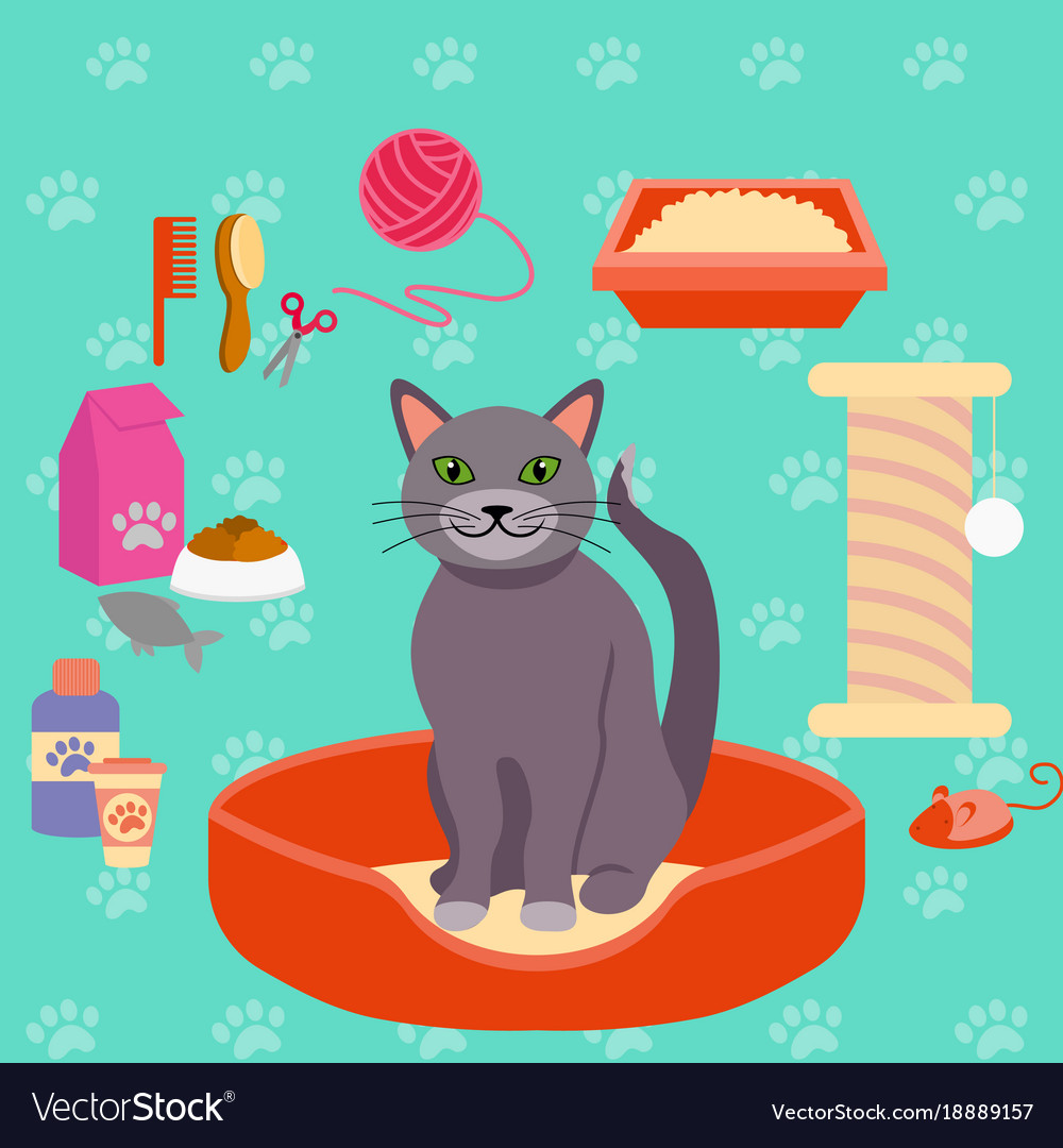 Cat and different pet care
