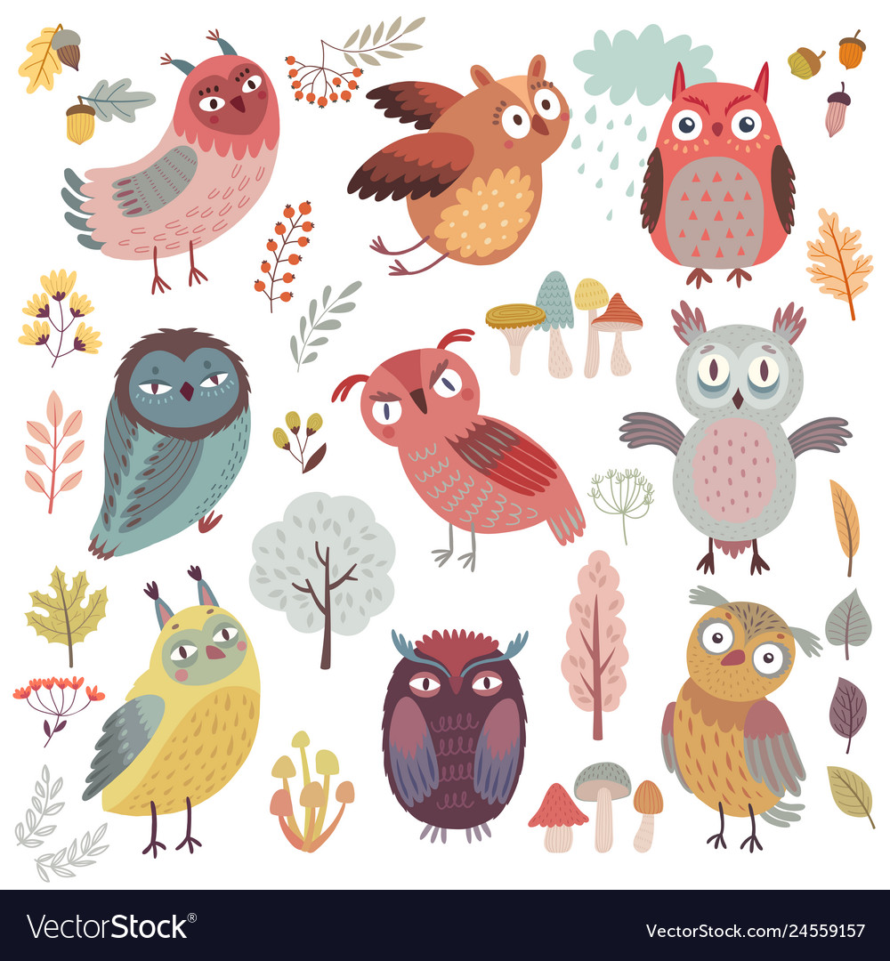 Cute woodland owls funny characters with