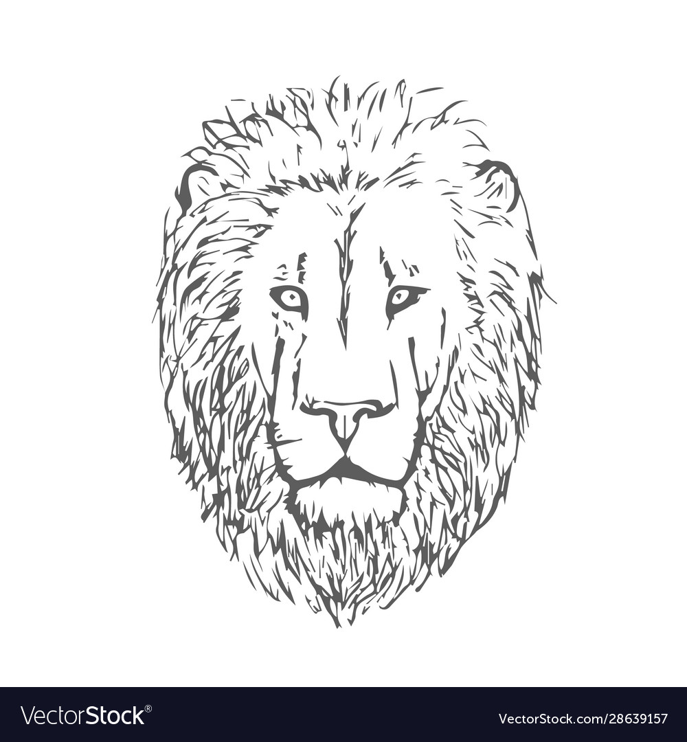Hand Drawn Lion Head Lion Face Royalty Free Vector Image 15 lion image black and white download outline professional designs for business and education. hand drawn lion head lion face royalty free vector image