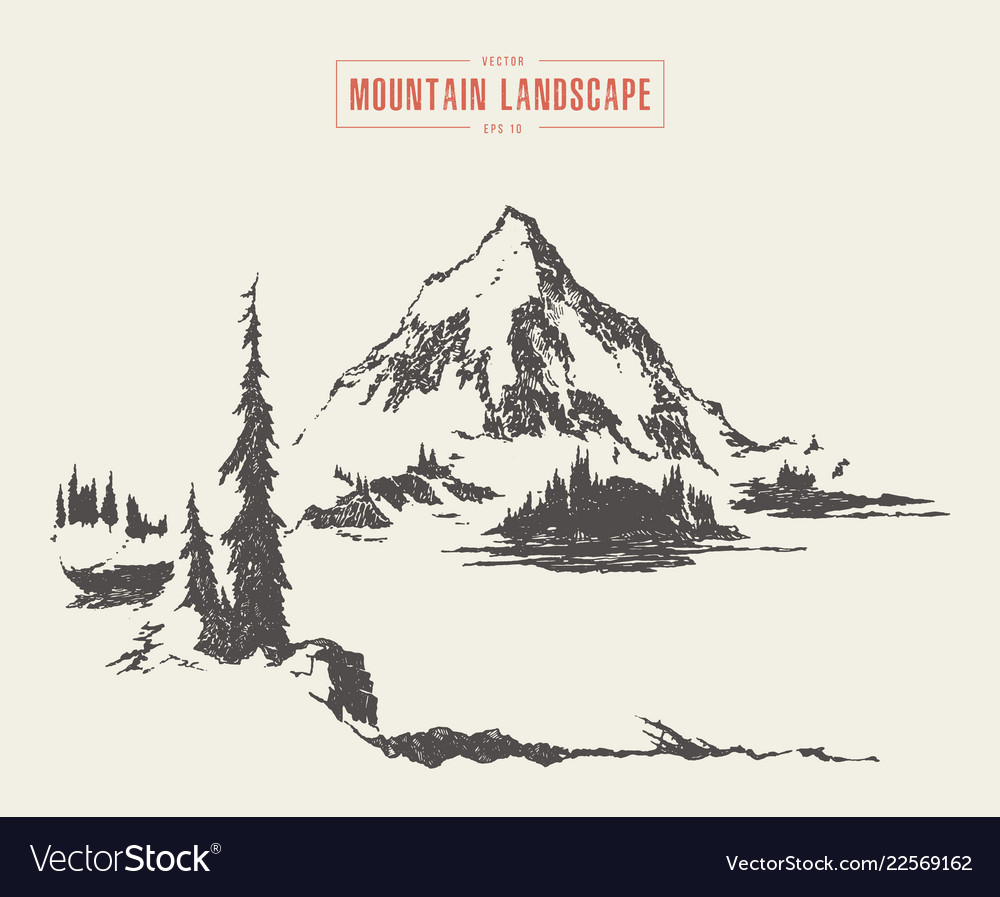 A mountain peak pine forest lake drawn