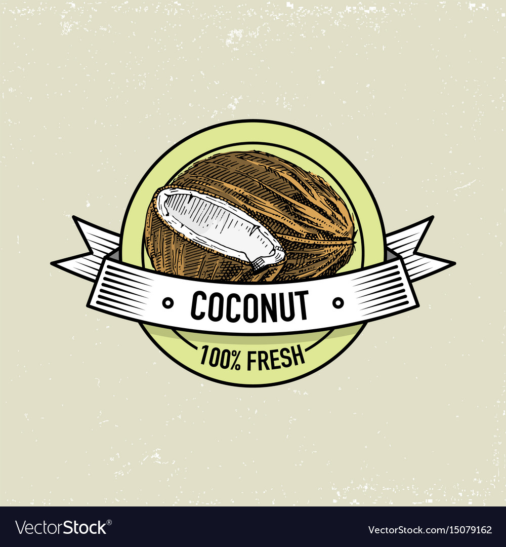 Coconut vintage hand drawn fresh fruits