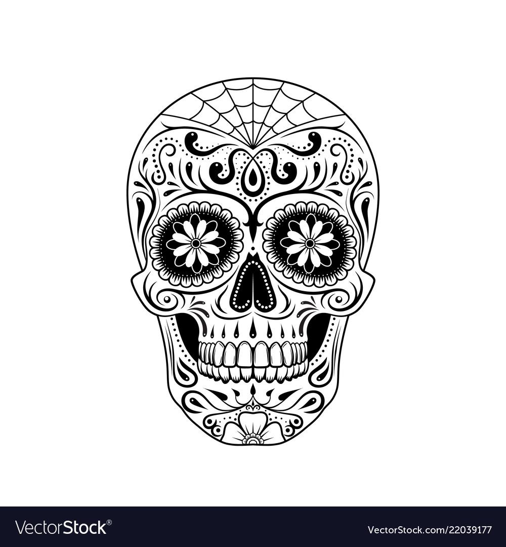 Stylized decorative sugar skull on white
