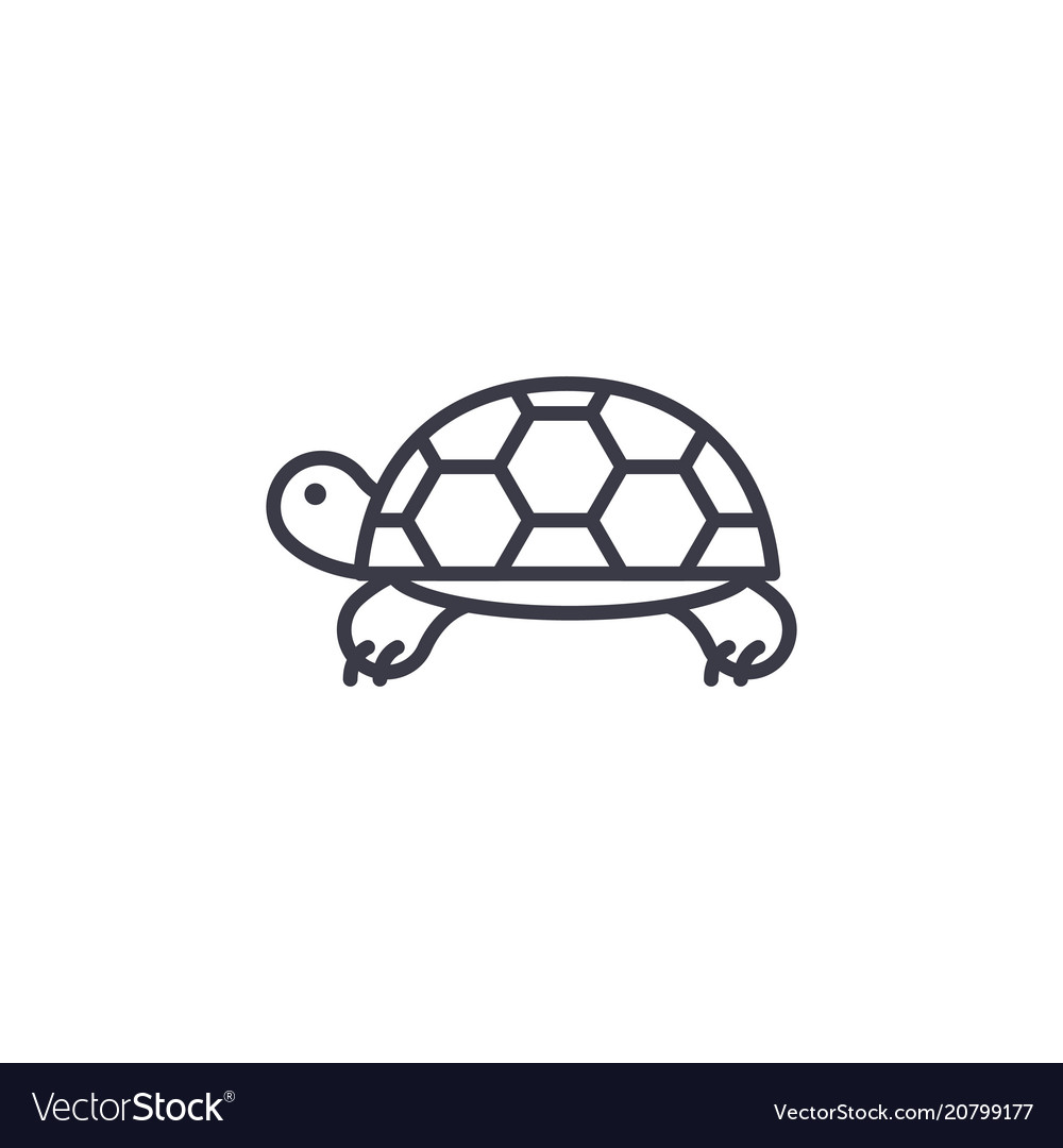Turtle line icon sign on