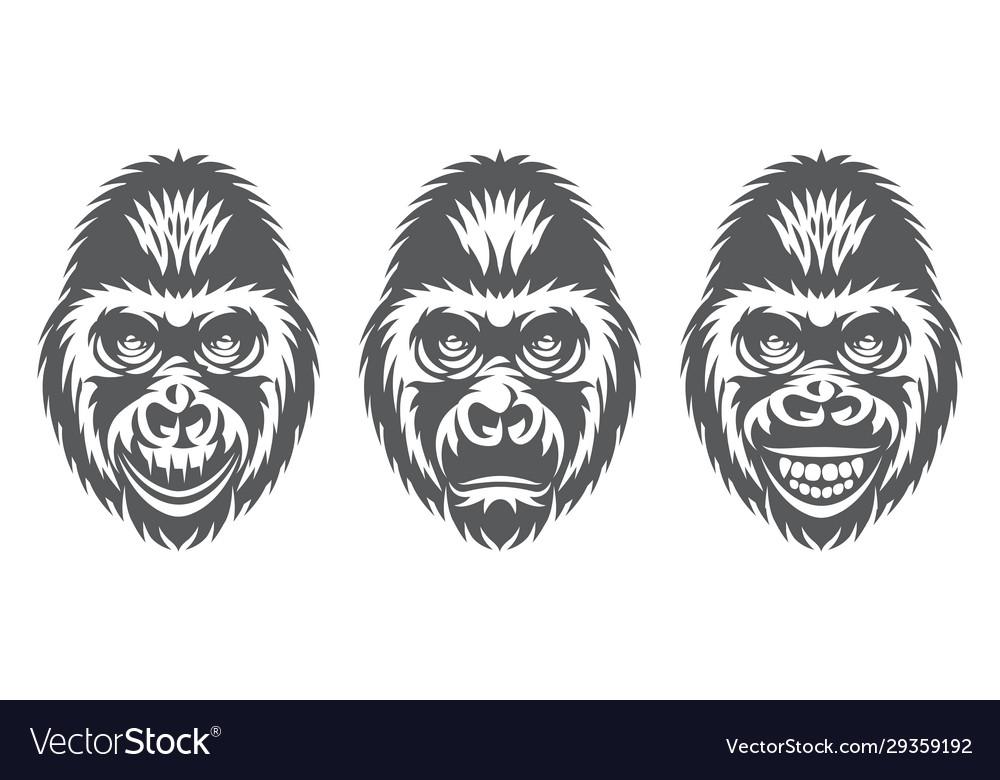Monochrome set three gorilla heads