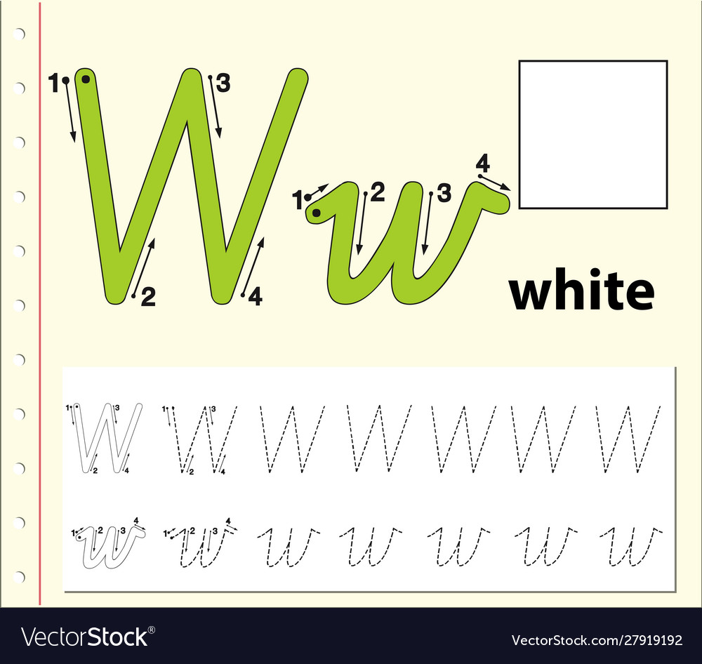 Tracing Alphabet Template For Letter W Royalty Free Vector