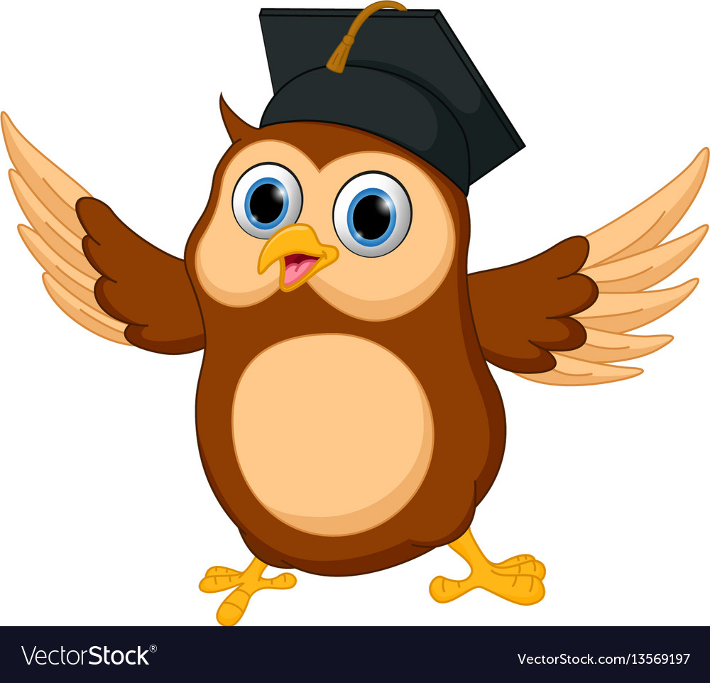 Happy owl cartoon wearing graduation cap