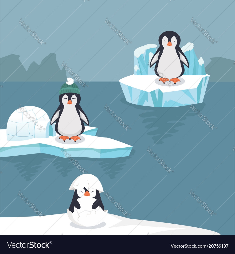 Penguins in arctic background