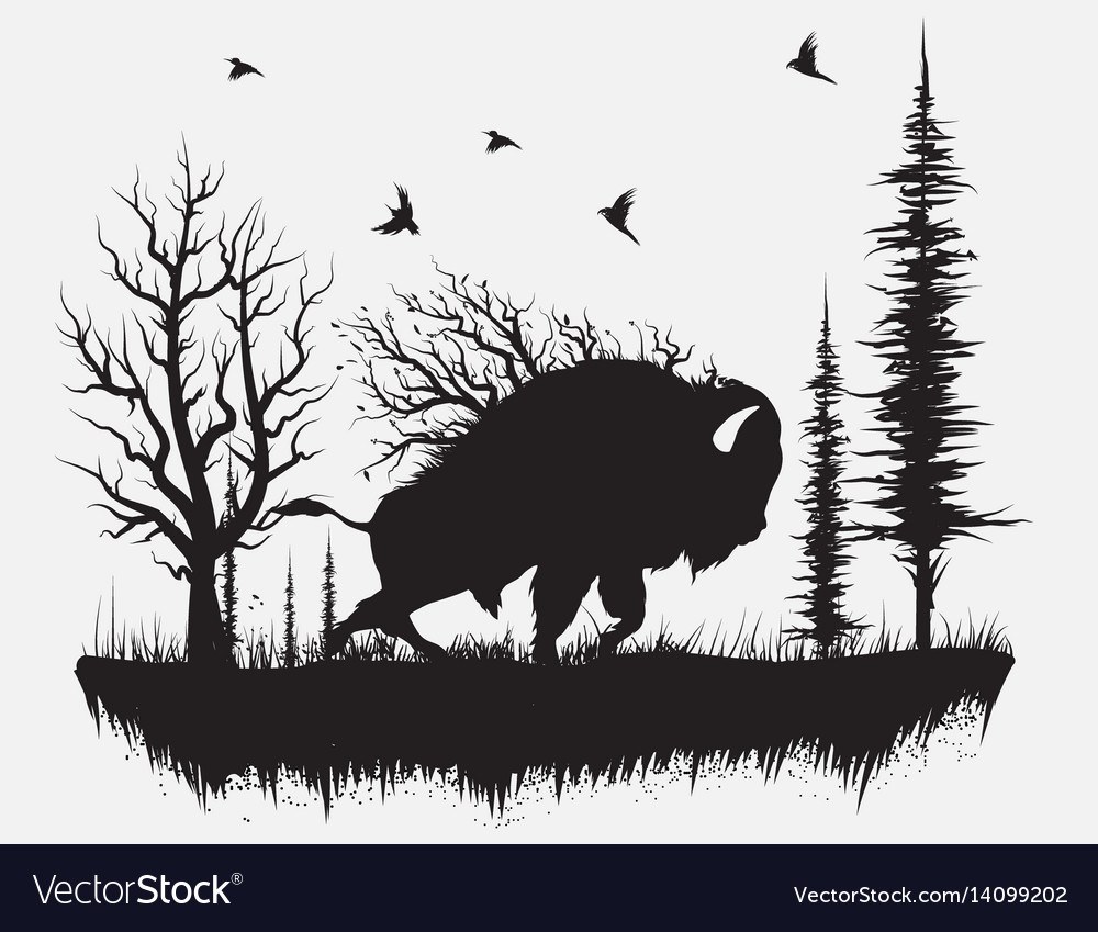 Buffalo walking in the forest vector image