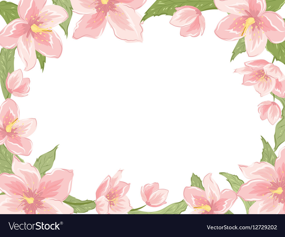 Rectangular border frame pink spring flowers white vector image