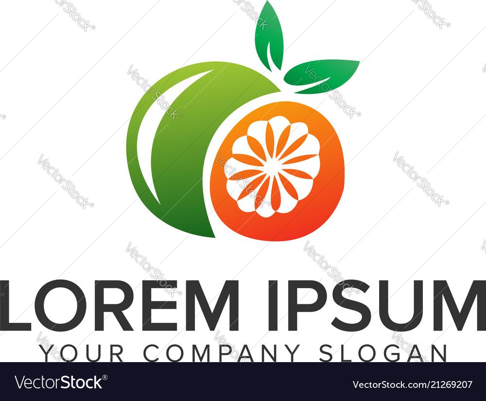 Orange fruit logo design concept template fully