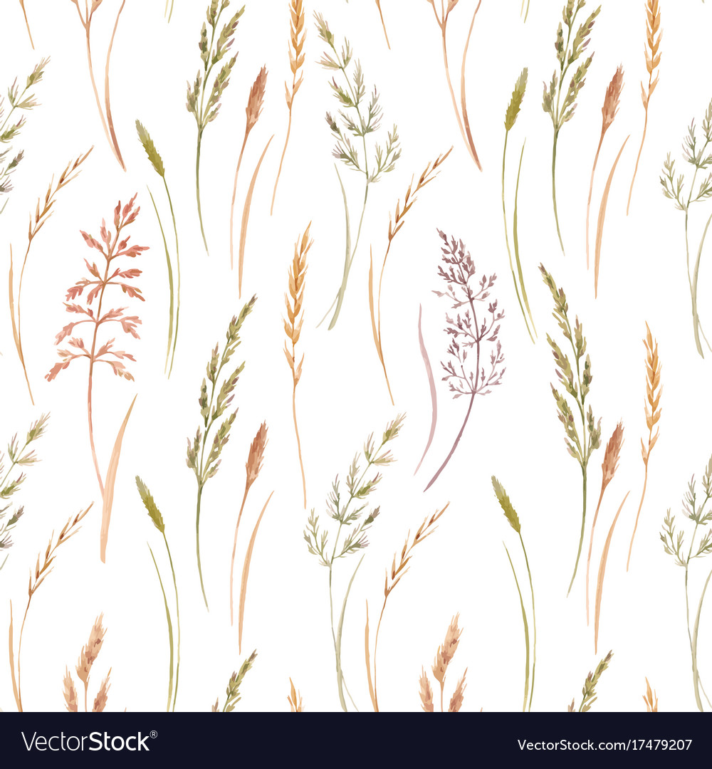 Wild field grass pattern