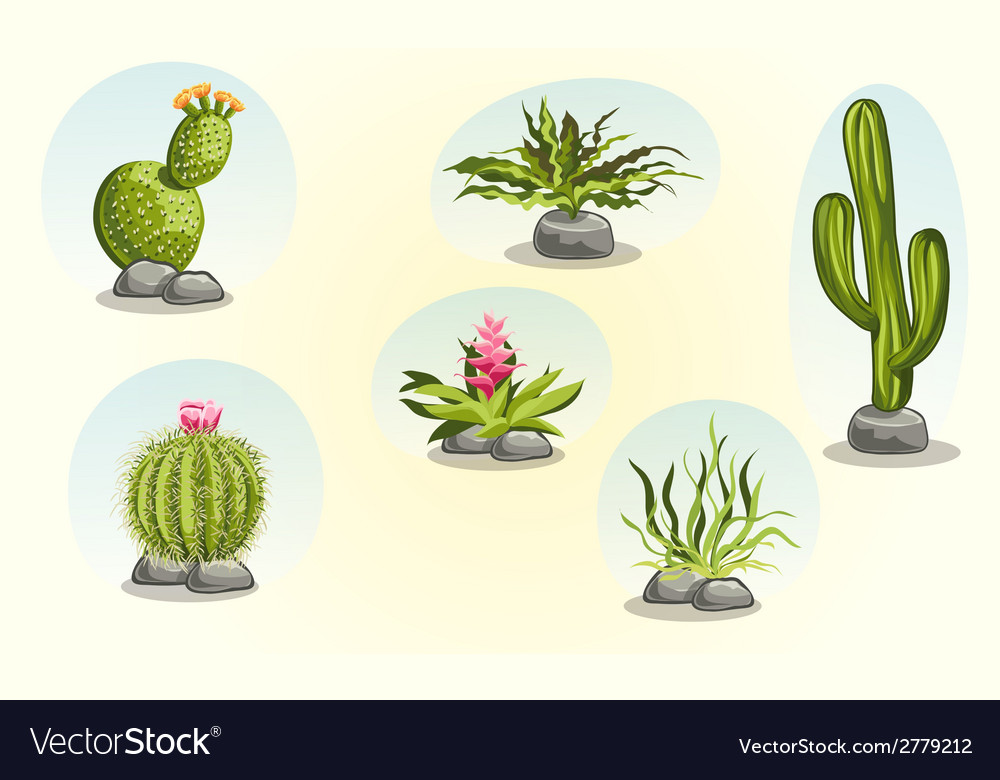 Collection Of Cacti And Desert Plants Royalty Free Vector