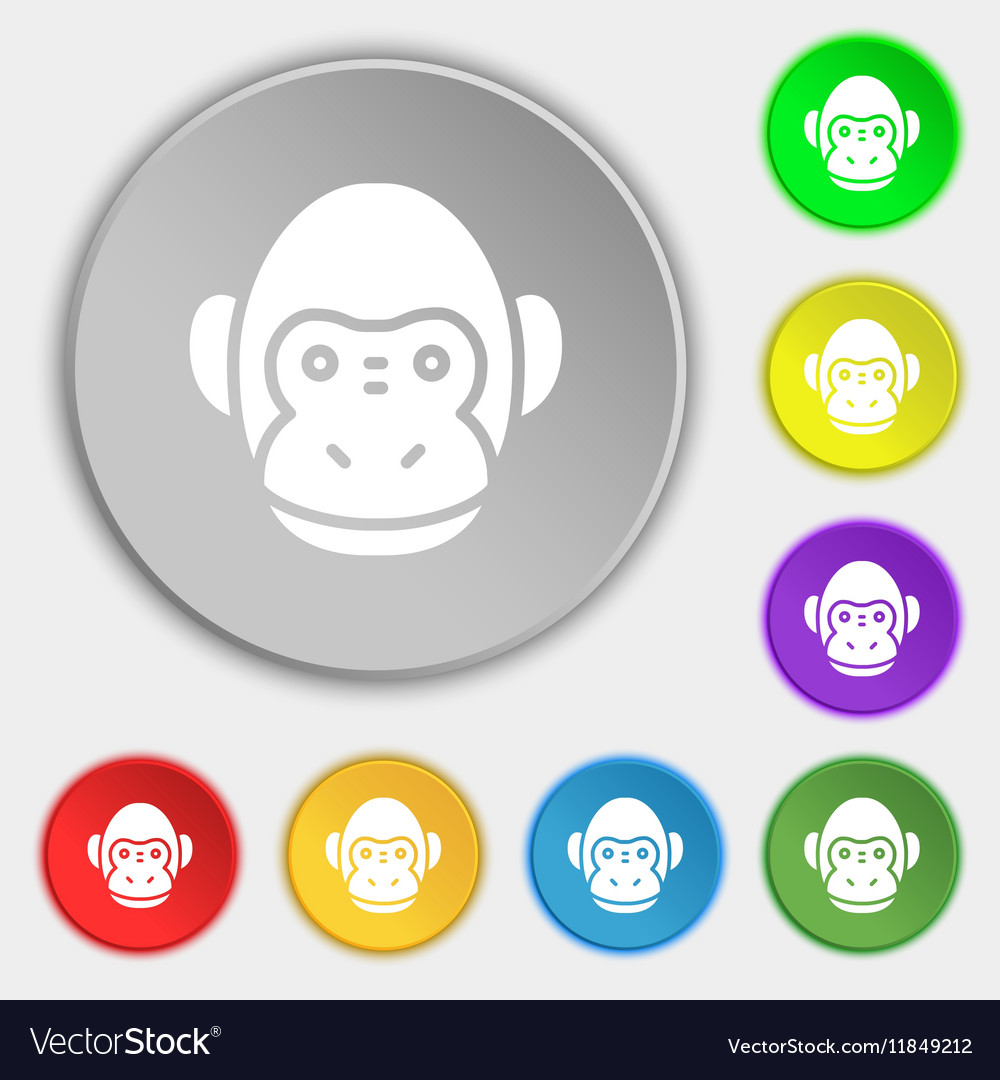 Monkey icon sign Symbol on eight flat buttons