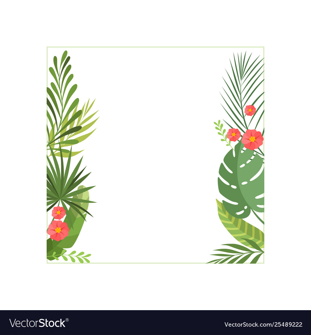 Tropical leaves and flowers elegant frame
