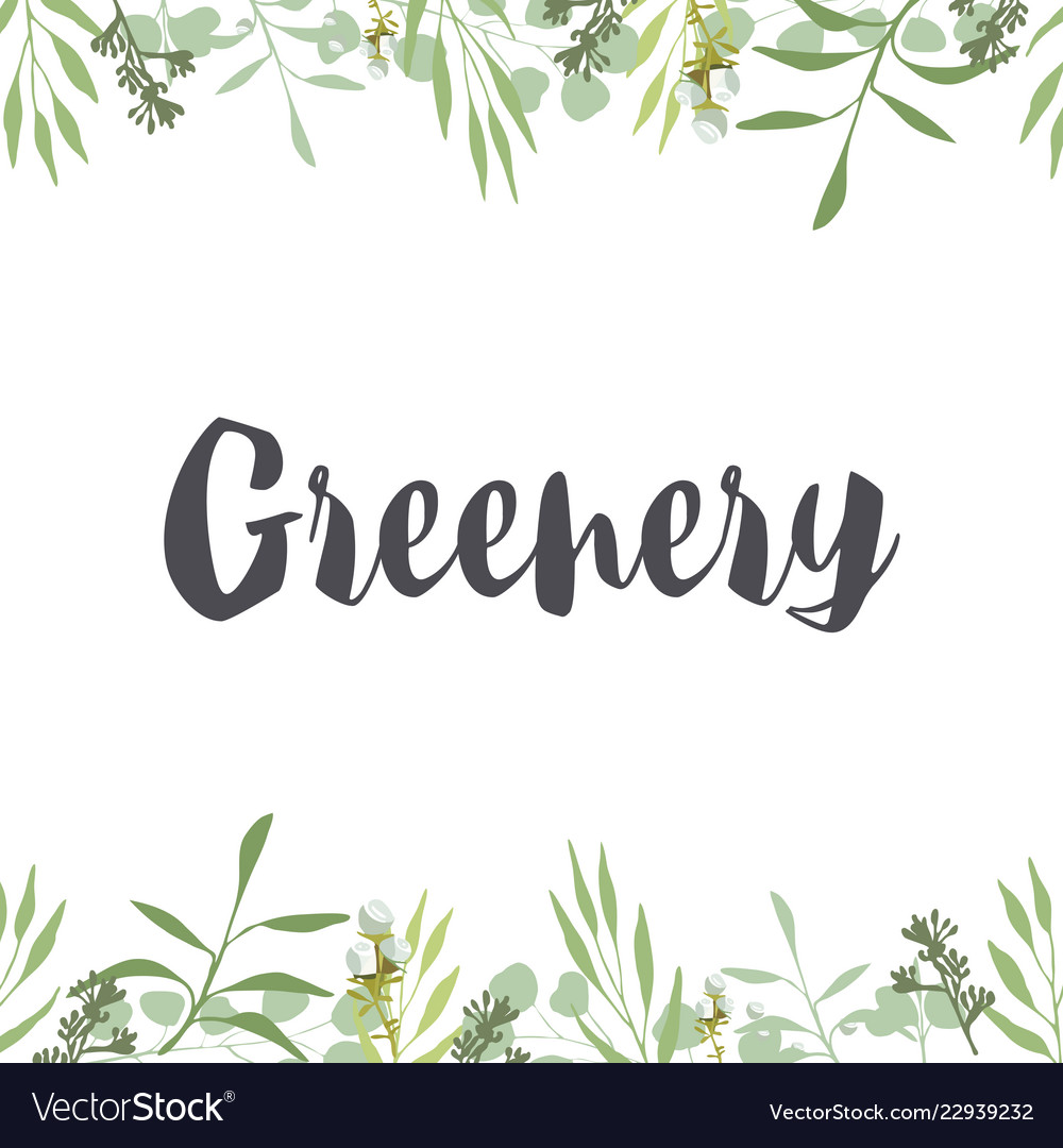 Greenery frame template for text herbal organic