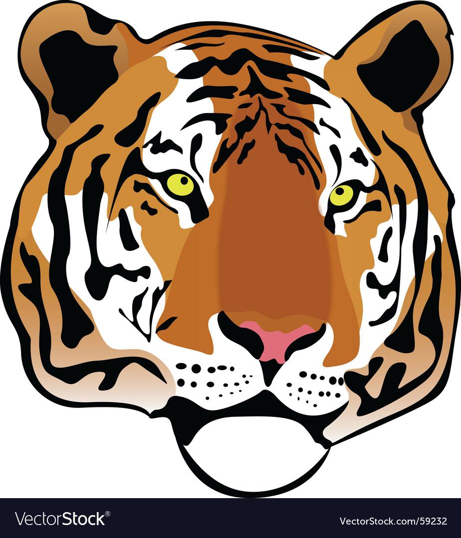 Siberian tiger vector image