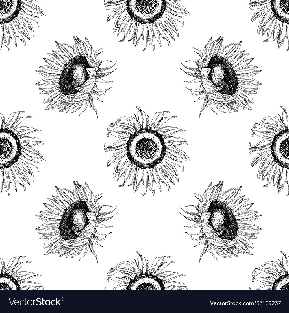 Hand drawn seamless pattern with sunflowers