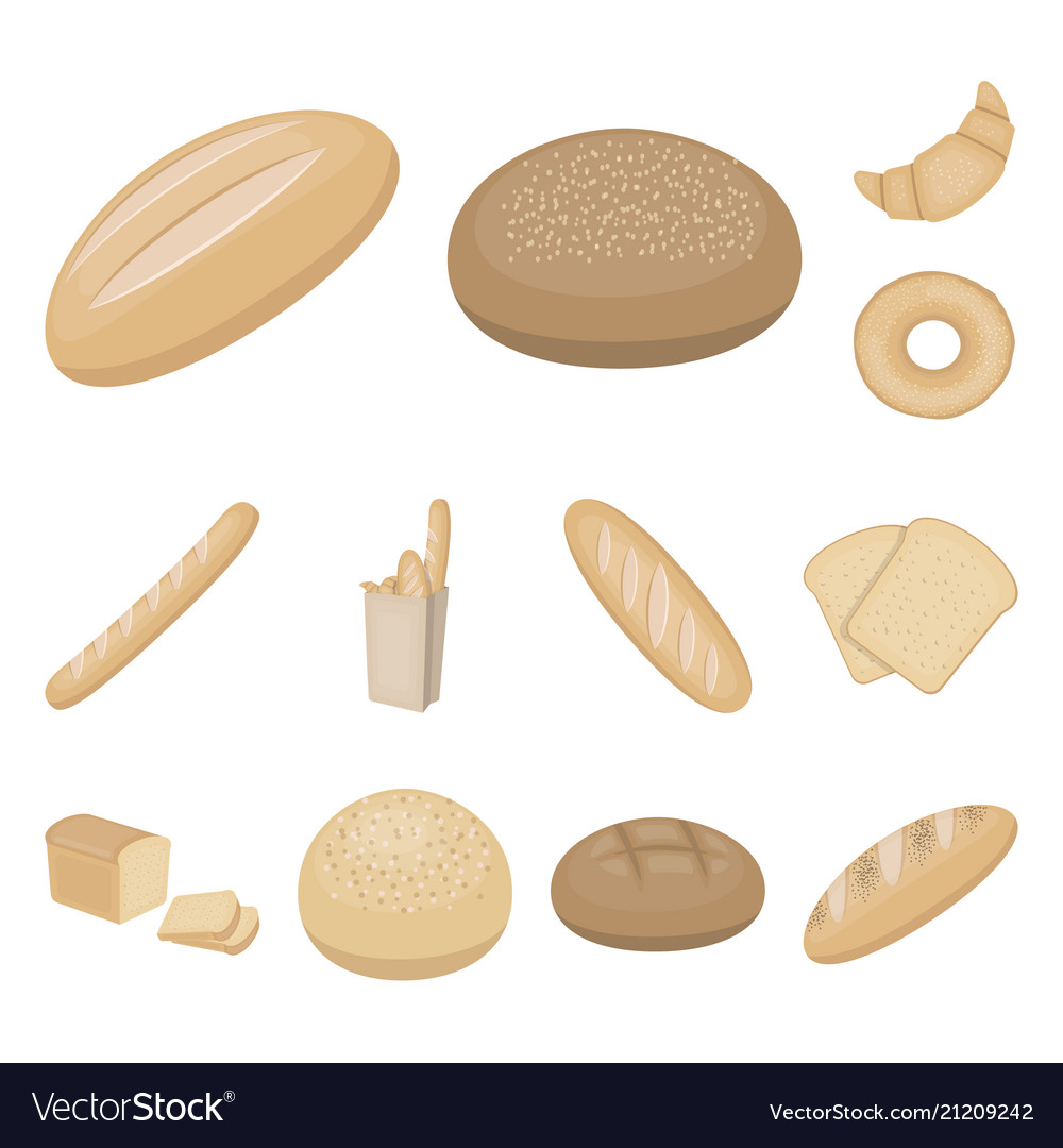 Types of bread cartoon icons in set collection for