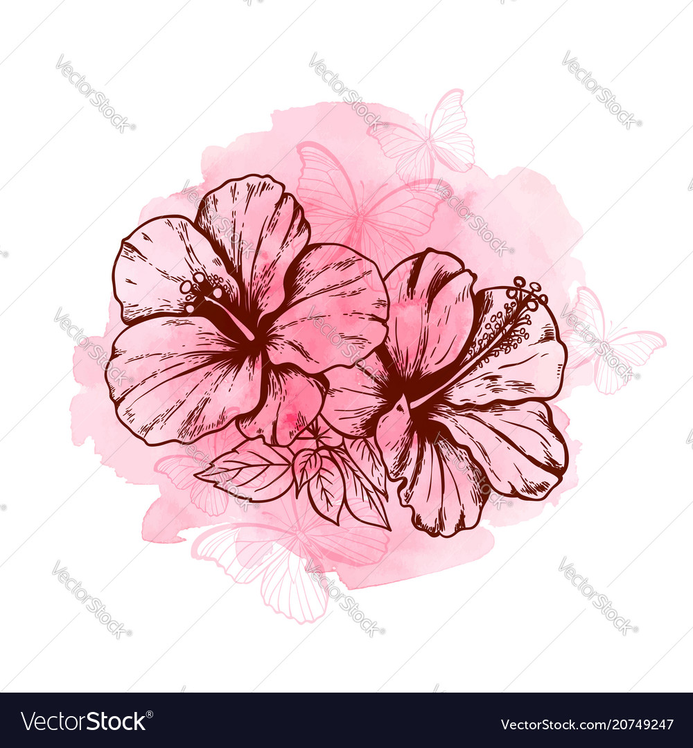 Abstract floral background with hibiscus flowers